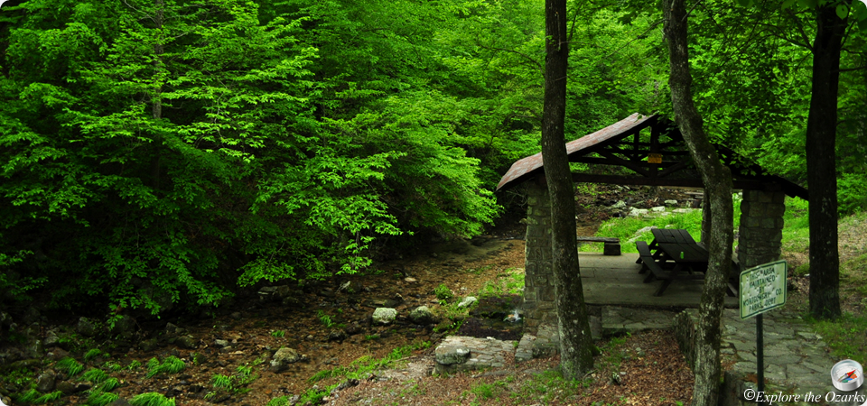 Collier springs picnic area of arkansas explore the ozarks for Ozark national forest cabins