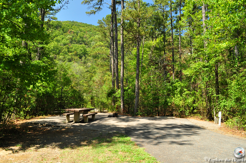 piney creek big and beautiful singles - entire home/apt for $650 this cottage provides a quite place to relax and take in the breathtaking water views of 1 1/2 mile wide st george creek.