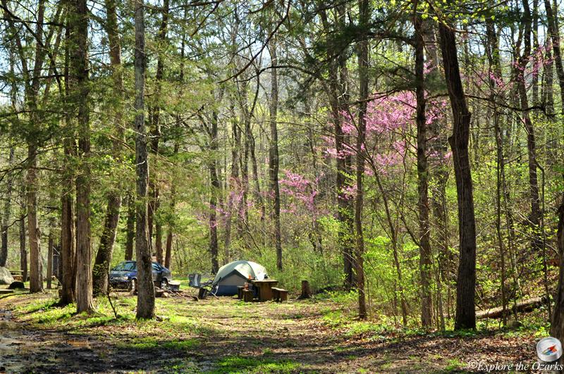 Richland Creek Wilderness Area Of Arkansas Explore The