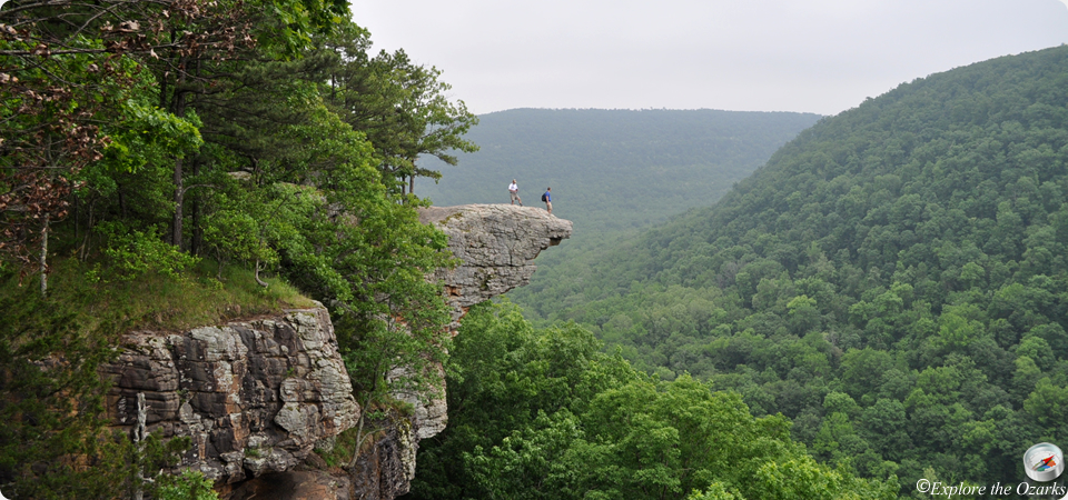 Hawksbill Crag/Whitaker Point   Upper Buffalo Wilderness | Explore