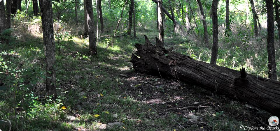 Stockton State Park Trails Explore The Ozarks
